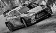 Hyundai i20 WRC rallye Walles - avec décals pour #5 et #6  1/43