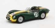 Lister Jaguar #29 Daily Express   1/43