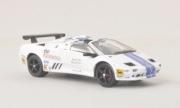 Lamborghini Diablo VT-R Roadster Trofeo  1/43