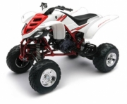 Yamaha Raptor 660 R couleurs variabes  1/12